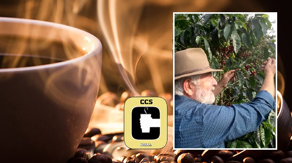 The Certified Coffee Specialist (CCS) designation is the coffee service industry's Mark of Distinction awarded by NAMA.